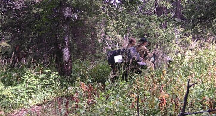 Фотокапканы Таганая охраняют богатства государственного парка