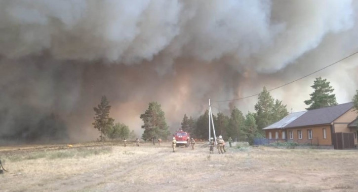 НУЖНА ПОМОЩЬ. Госпожнадзор ищет очевидцев крупных лесных пожаров в Челябинской области
