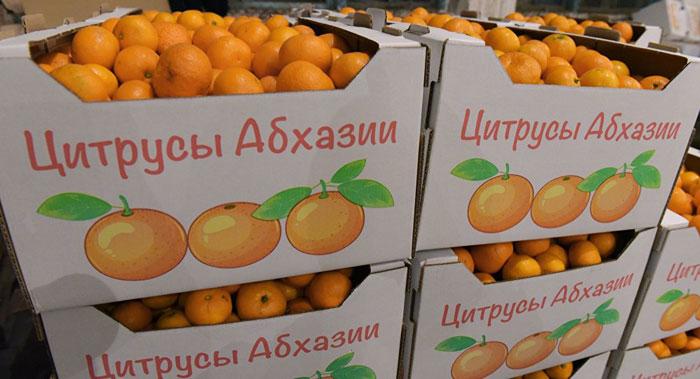 Россельхознадзор региона ввел запрет наввоз фруктов иовощей изАбхазии