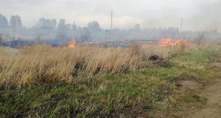 Вред отлесных пожаров вЧелябинской области оценили в16 млрд