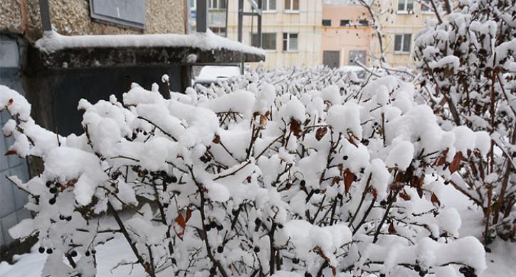ВНИМАНИЕ. Циклон принесет на Южный Урал снегопады и ветер до 20 м/с