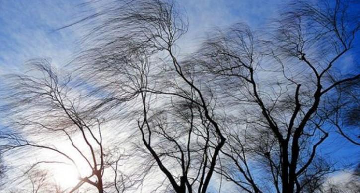 Сильный ветер идождь. Синоптики прогнозируют ухудшение погоды