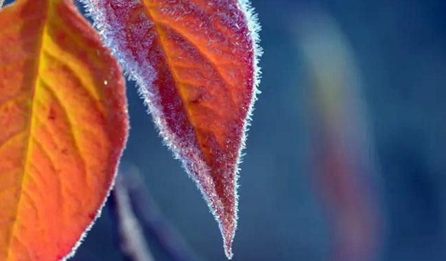 Первая осенняя ночь на Южном Урале будет морозной