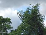 ВНИМАНИЕ. Шквал до 28 метров в секунду ожидается в Челябинской области – экстренное предупреждение от МЧС