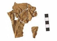 В Челябинской области археологи нашли осколки античного орнамента