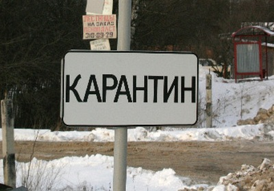 В Новосибирске борются с распространением бешенства