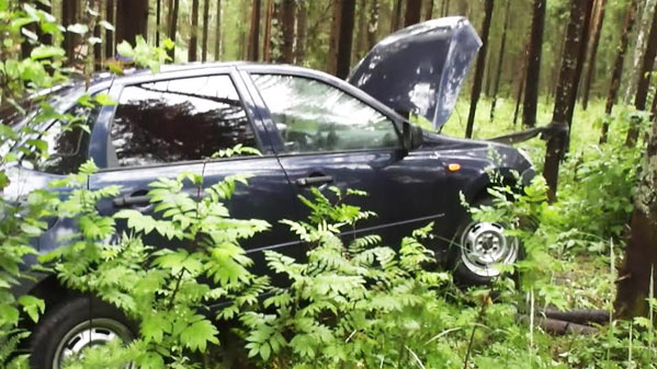 с женой в лесу на машине