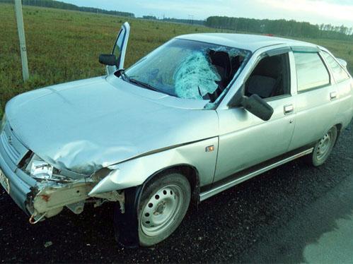 Натрассе Челябинск— Москва ВАЗ сбил насмерть подростка