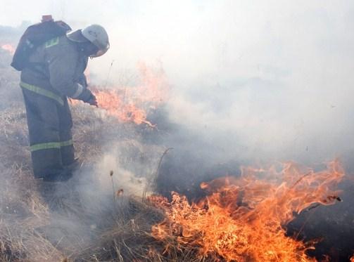 Запожароопасный сезон наЮжном Урале сгорело практически три тысячи гектаров леса