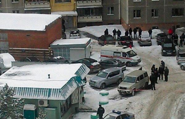 Тарантулы в красноярском крае новости