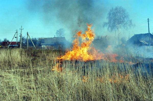ВУральском округе полыхает 15 тыс. гектаров сухой травы