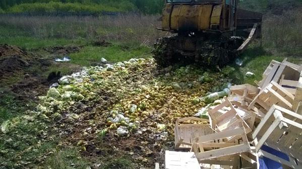 ВЧелябинске уничтожили практически  две тонны польских груш икапусты