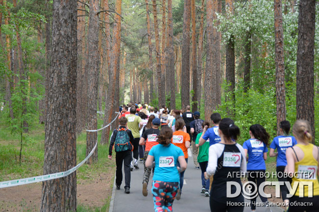 Километры хороших дел— Зеленый марафон Сбербанка