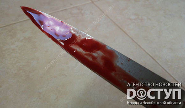 Гражданин Челябинской области зверски убил супругу после новоселья