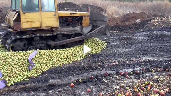 НаЮжном Урале уничтожили 119 тонн санкционных яблок игруш