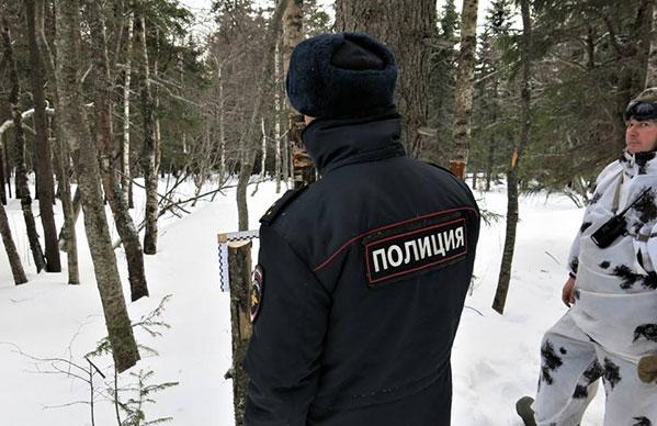 Вчелябинском нацпарке «Таганай» туристы «нарубили» себе статью
